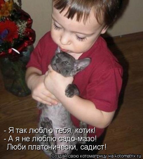 Котоматрица: - Я так люблю тебя, котик! - А я не люблю садо-мазо!  Люби платонически, садист!