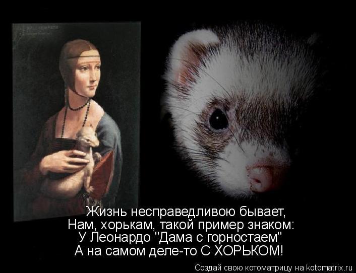 """Котоматрица: Жизнь несправедливою бывает, Нам, хорькам, такой пример знаком: У Леонардо """"Дама с горностаем"""" А на самом деле-то С ХОРЬКОМ!"""