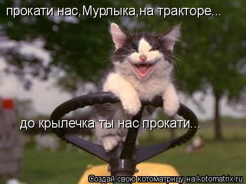 Котоматрица: прокати нас,Мурлыка,на тракторе... до крылечка ты нас прокати...