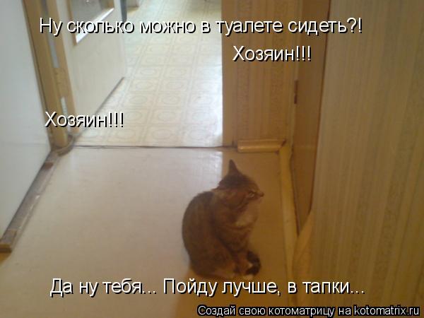 Котоматрица: Ну сколько можно в туалете сидеть?! Хозяин!!! Хозяин!!! Да ну тебя... Пойду лучше, в тапки...