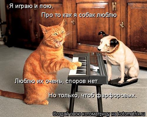 Котоматрица: Я играю и пою, Про то как я собак люблю Люблю их очень, споров нет Но только, чтоб фарфоровых.