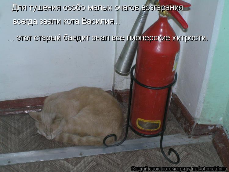 Котоматрица: ... этот старый бандит знал все пионерские хитрости. Для тушения особо малых очагов возгарания всегда звали кота Василия...