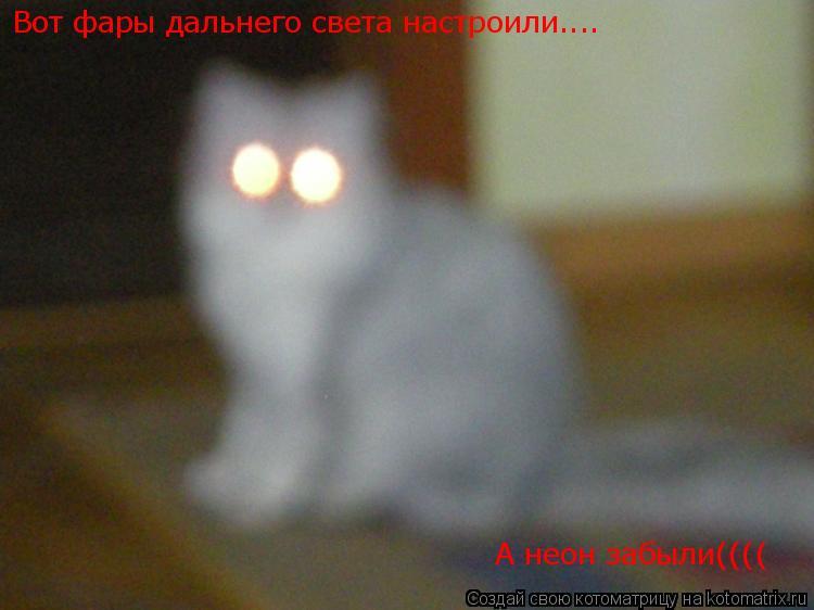 Котоматрица: Вот фары дальнего света настроили.... А неон забыли((((