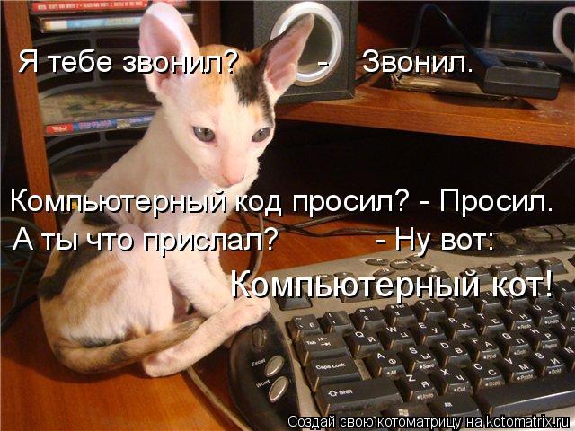 Котоматрица: Я тебе звонил?         -    Звонил. Компьютерный код просил? - Просил. А ты что прислал?           - Ну вот: Компьютерный кот!