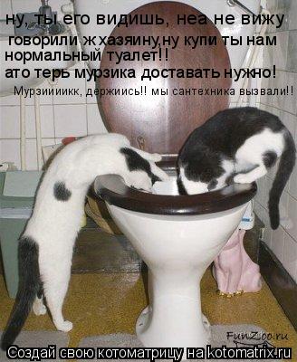 Котоматрица: говорили ж хазяину,ну купи ты нам нормальный туалет!! ато терь мурзика доставать нужно! ну, ты его видишь, неа не вижу Мурзиииикк, держиись!! м