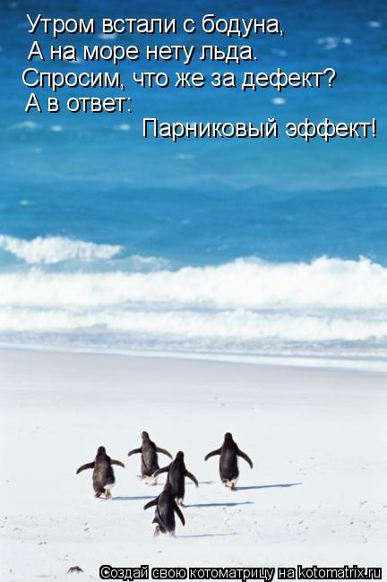 Котоматрица: Утром встали с бодуна, А на море нету льда. Спросим, что же за дефект? А в ответ: Парниковый эффект!