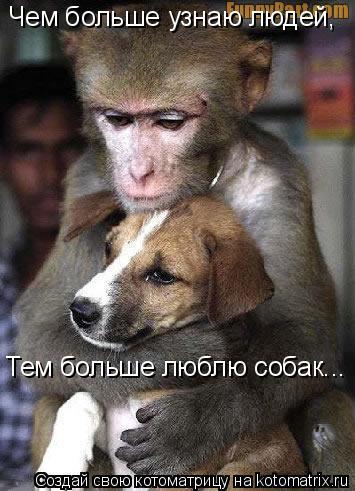Котоматрица: Чем больше узнаю людей, Тем больше люблю собак...