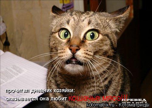 Котоматрица: прочитал дневник хозяйки: оказывается она любит  кошачье мясо!!!