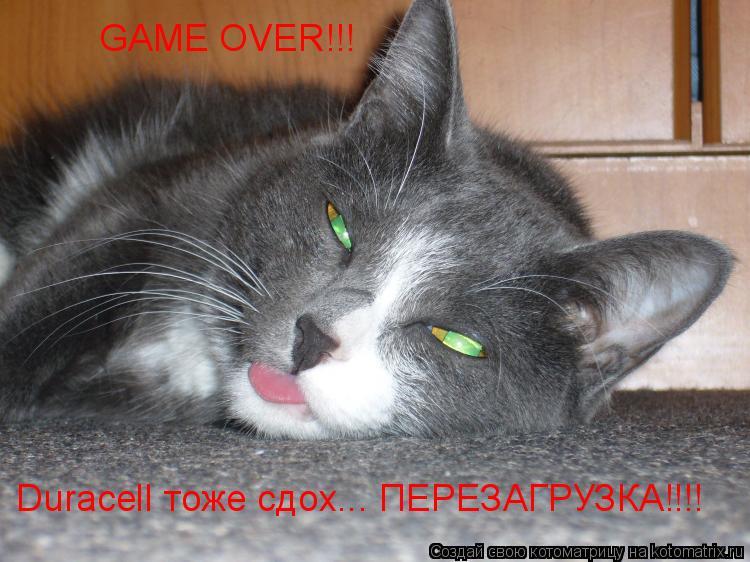 Котоматрица: GAME OVER!!! Duracell тоже сдох... ПЕРЕЗАГРУЗКА!!!!