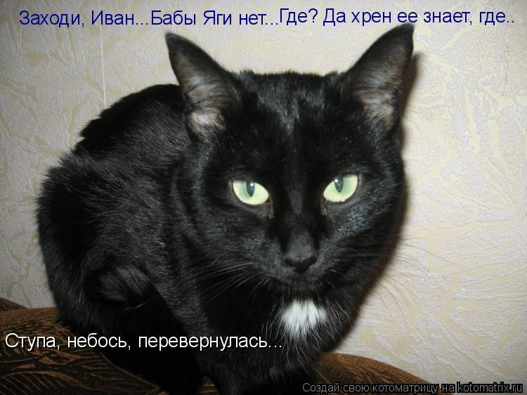 Котоматрица: Заходи, Иван...Бабы Яги нет... Где? Да хрен ее знает, где.. Ступа, небось, перевернулась...