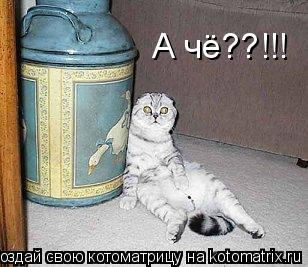 Котоматрица: А чё??!!!