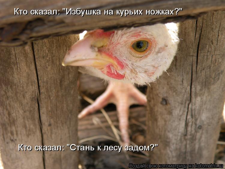 "Котоматрица: Кто сказал: ""Избушка на курьих ножках?"" Кто сказал: ""Стань к лесу задом?"""