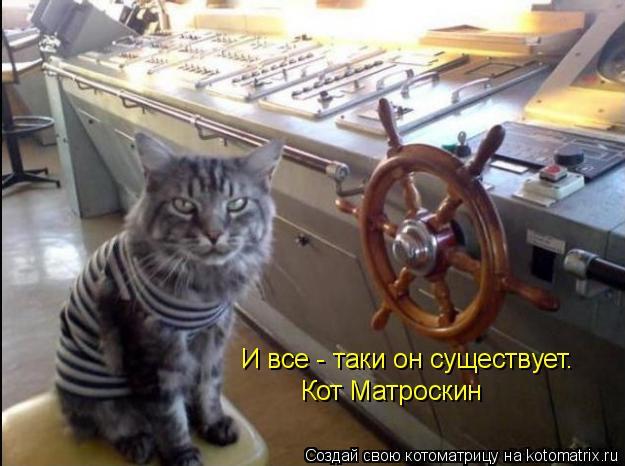 Котоматрица: И все - таки он существует.  Кот Матроскин