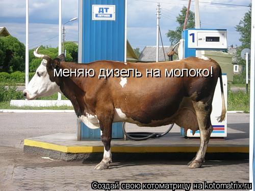 Котоматрица: меняю дизель на молоко!