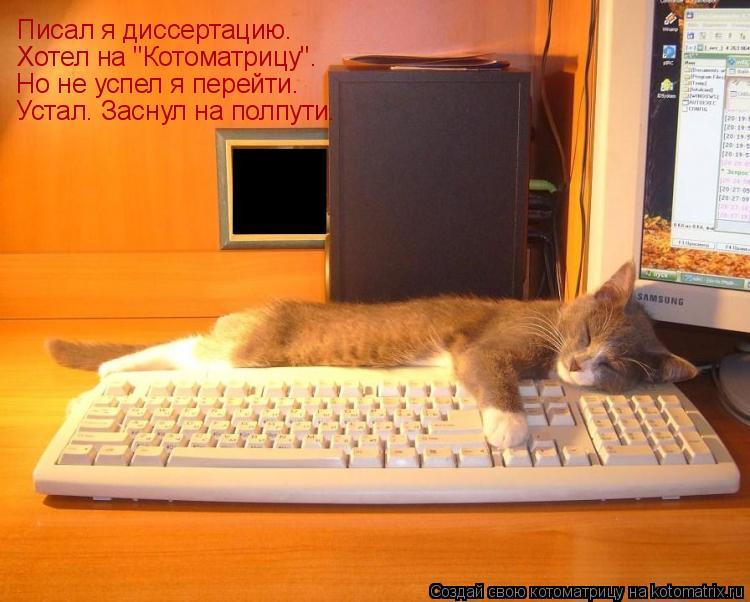 "Котоматрица: Писал я диссертацию. Хотел на ""Котоматрицу"". Но не успел я перейти. Устал. Заснул на полпути."