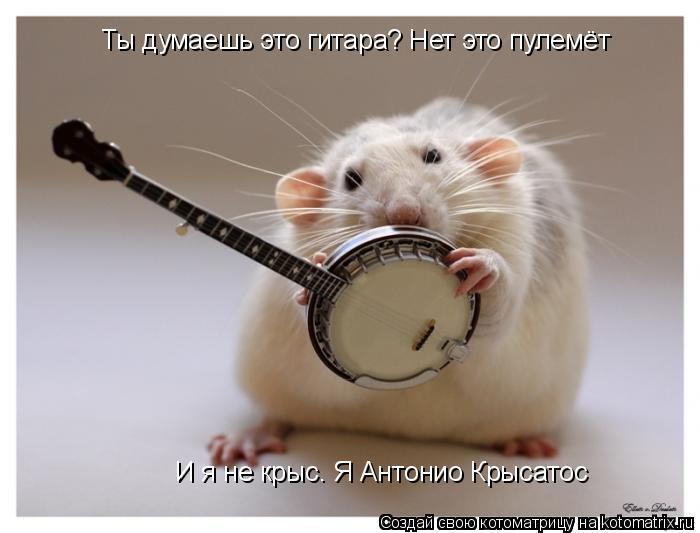 Котоматрица: Ты думаешь это гитара? Нет это пулемёт И я не крыс. Я Антонио Крысатос