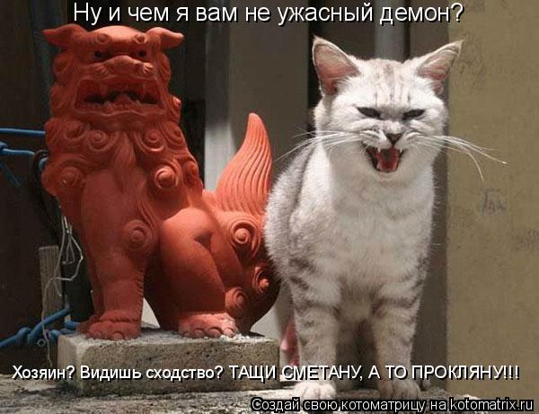 Котоматрица: Ну и чем я вам не ужасный демон? Хозяин? Видишь сходство? ТАЩИ СМЕТАНУ, А ТО ПРОКЛЯНУ!!!