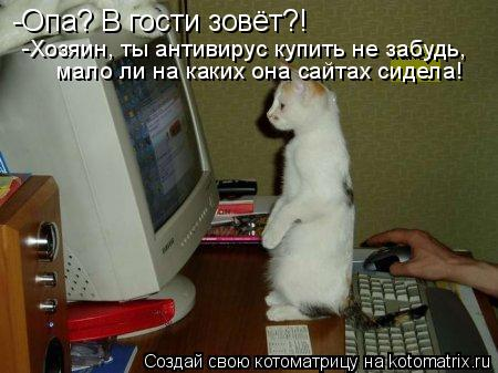 Котоматрица: -Опа? В гости зовёт?! -Хозяин, ты антивирус купить не забудь,  мало ли на каких она сайтах сидела!