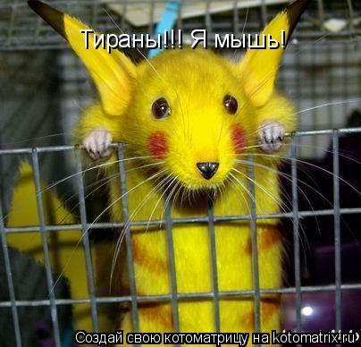 Котоматрица: Тираны!!! Я мышь!