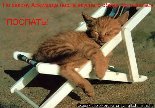 Котоматрица: По закону Архимеда после вкусного обеда пологаеться  ПОСПАТЬ!