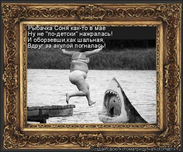 """Котоматрица: Рыбачка Соня как-то в мае Ну не """"по-детски"""" нажралась! И оборзевши,как шальная, Вдруг за акулой погналась!"""