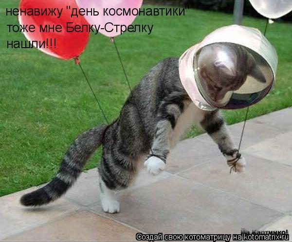 """Котоматрица: ненавижу """"день космонавтики"""" тоже мне Белку-Стрелку нашли!!!"""
