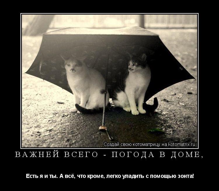 Котоматрица: Важней всего - погода в доме,  Есть я и ты. А всё, что кроме, легко уладить с помощью зонта!