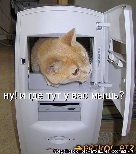 Котоматрица: ну! и где тут у вас мышь?