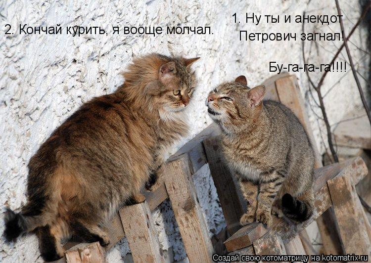 Котоматрица: 1. Ну ты и анекдот Петрович загнал! 1. Ну ты и анекдот  Петрович загнал! Бу-га-га-га!!!! 2. Кончай курить, я вооще молчал.