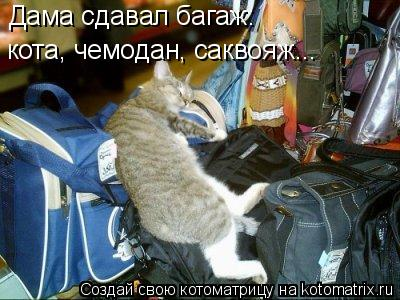 Котоматрица: Дама сдавал багаж: кота, чемодан, саквояж...