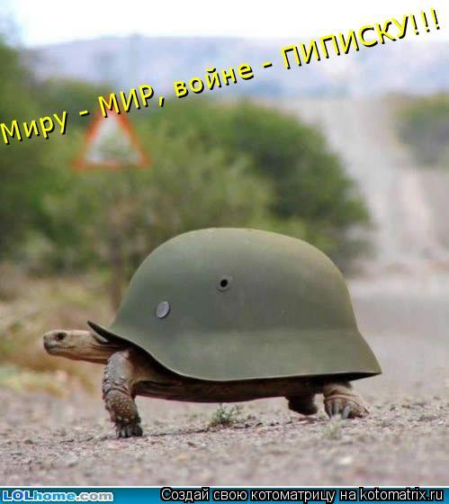 Котоматрица: Миру - МИР, войне - ПИПИСКУ!!!