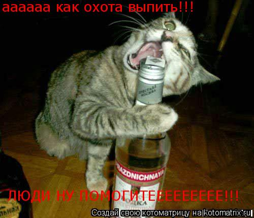 Котоматрица: аааааа аааааа как охота выпить!!! ЛЮДИ НУ ПОМОГИТЕЕЕЕЕЕЕЕЕ!!!