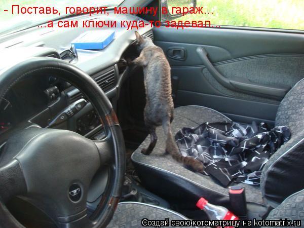 Котоматрица: - Поставь, говорит, машину в гараж...  ...а сам ключи куда-то задевал...