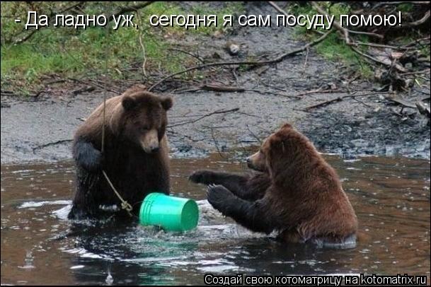 Котоматрица: - Да ладно уж,  сегодня я сам посуду помою!