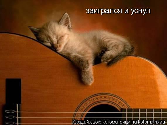 Котоматрица: заигрался и уснул