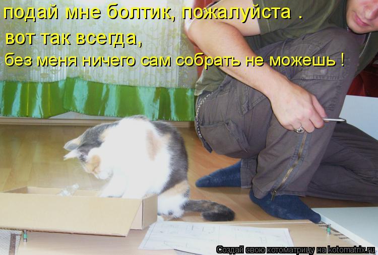 Котоматрица: подай мне болтик, пожалуйста . вот так всегда, без меня ничего сам собрать не можешь !