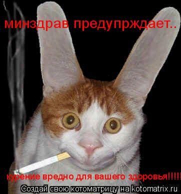 Котоматрица: минздрав предупрждает.. курение вредно для вашего здоровья!!!!!