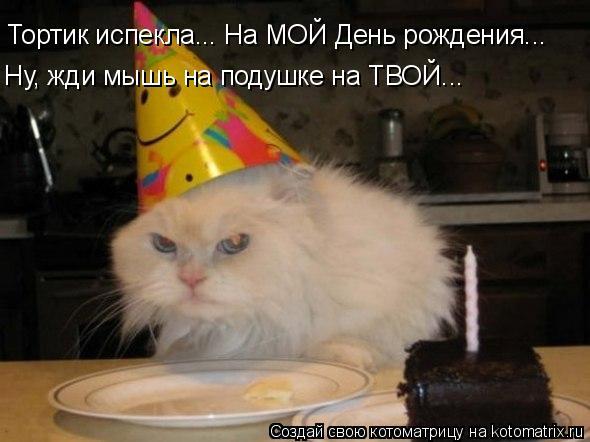 Котоматрица: Тортик испекла... На МОЙ День рождения... Ну, жди мышь на подушке на ТВОЙ...