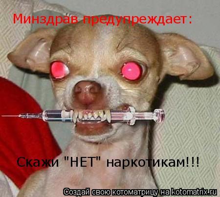 """Котоматрица: Скажи """"НЕТ"""" наркотикам!!! Минздрав предупреждает:"""