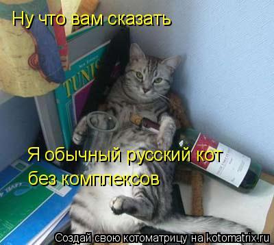 Котоматрица: Ну что вам сказать Я обычный русский кот  без комплексов