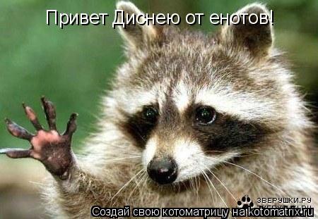 Котоматрица: Привет Диснею от енотов!
