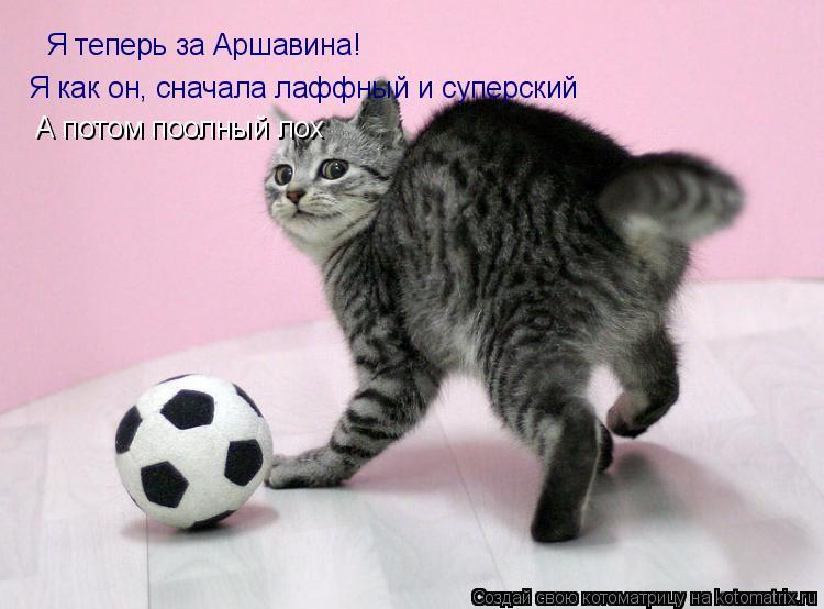 Котоматрица: Я теперь за Аршавина! Я как он, сначала лаффный и суперский А потом поолный лох