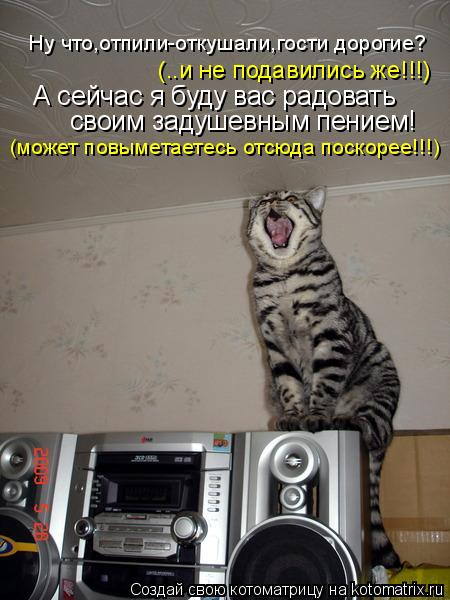Котоматрица: Ну что,отпили-откушали,гости дорогие? (..и не подавились же!!!) А сейчас я буду вас радовать своим задушевным пением! (может повыметаетесь отсю