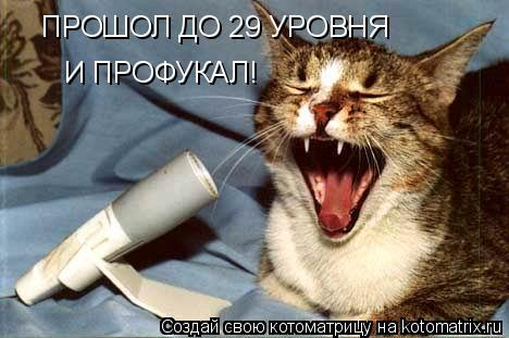 Котоматрица: ПРОШОЛ ДО 29 УРОВНЯ И ПРОФУКАЛ!