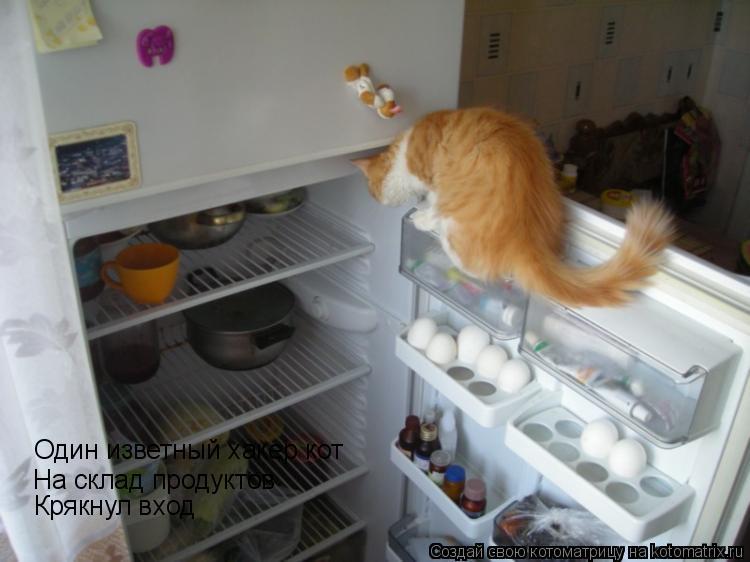 Котоматрица: Один изветный хакер кот На склад продуктов  Крякнул вход