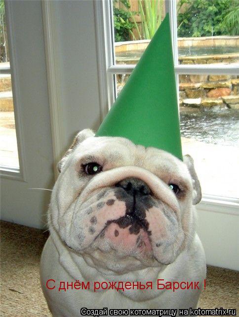 Котоматрица: С днём рожденья Барсик !
