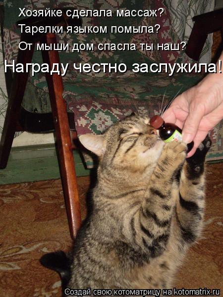 Котоматрица: Хозяйке сделала массаж? Тарелки языком помыла? От мыши дом спасла ты наш? Награду честно заслужила!