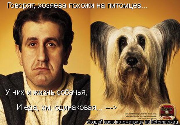 Котоматрица: Говорят, хозяева похожи на питомцев... У них и жизнь собачья, И еда, хм, одинаковая... --->