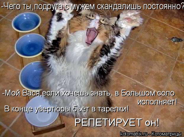 Котоматрица: -Мой Вася,если хочешь знать, в Большом соло исполняет! В конце увертюры бьёт в тарелки! РЕПЕТИРУЕТ он! -Чего ты,подруга,с мужем скандалишь пос