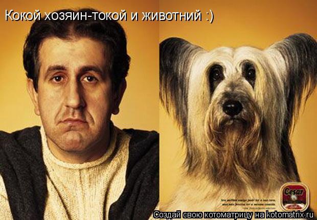 Котоматрица: Кокой хозяин-токой и животний :)